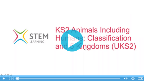 Remote lesson - the five kingdoms - ks2