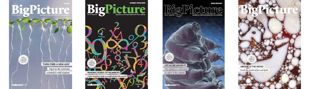 Big Picture magazine front covers