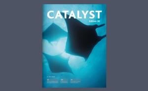 Catalyst edition 30