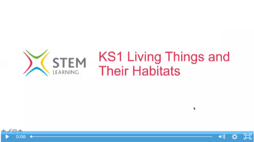 Remote lesson - Living things and their habitats - key stage 1