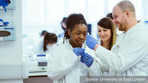 Science technicians in lab