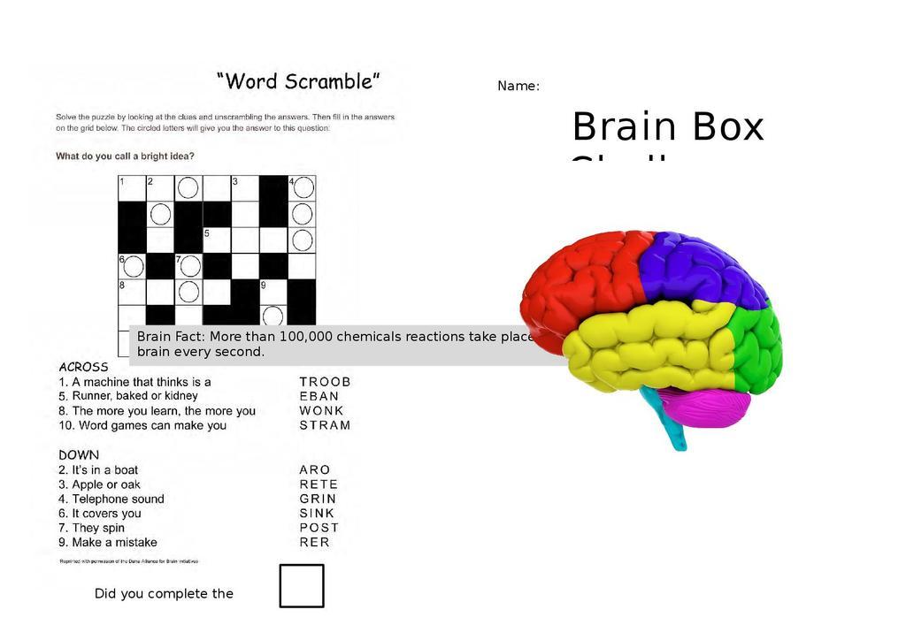Brain Box Workbook | STEM