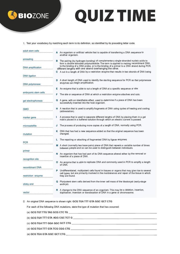 Biozone quiz: genetics | STEM