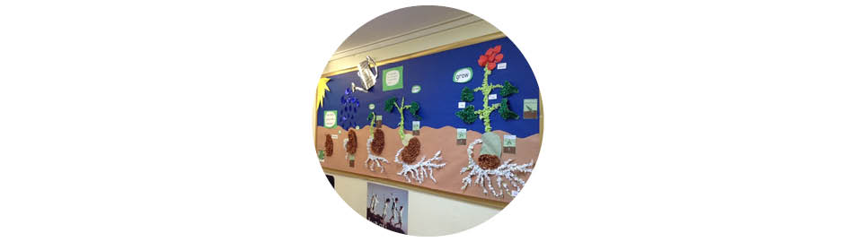 Classroom displays competition winners