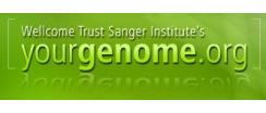 yourgenome.org logo